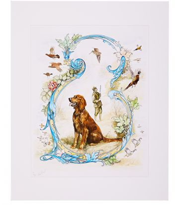 RED SETTER PRINT LTD EDITION 20 - KEN HUNT